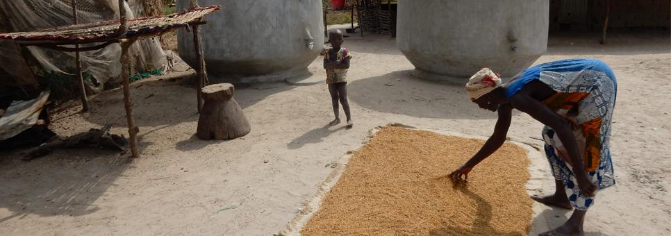 Goede doel Guinea-Bissau