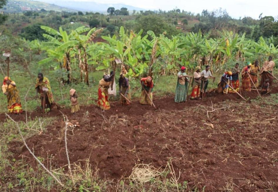 Stichting Dusabikane Burundy